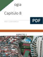 184077-Aula Sociologia 8 Capítulo Estrutura Social e Estratificação