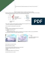 05. Anestesia Neuroaxial