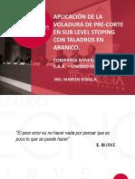 mrojas.pdf