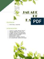 TI - Jarabe de Paico