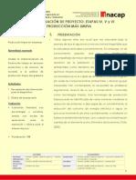 ETAPA N°4, 5 Y 6 PROYECTO DE PRODUCCIÓN LIMPIA (1)