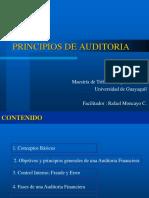55202973 Principios de Auditoria