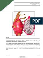 DRAGONFRUITTechLitv10512.pdf