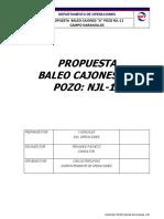 Propuesta Pozo NJL-11 v-6 Vf