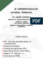 ACV Arterial Perinatal