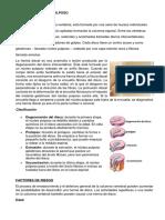 c. Musculoesqueleticos (1)