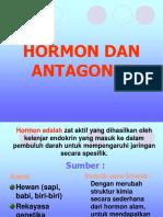 Hormon Dan Antagonis