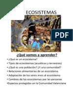 Los-ecosistemas1.pdf