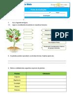 avaliação trim março (plantas solo animais sistema solar) 3º.pdf