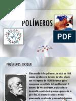 Polimeros Molding Extru