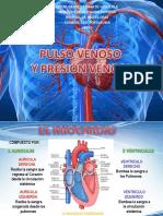 Pulsovenosoypresionvenosa 150515052357 Lva1 App6891
