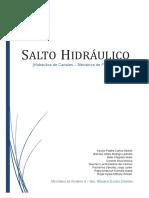 Dlscrib.com Salto Hidraulico