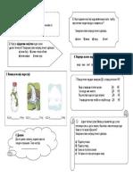 SON II razred.pdf