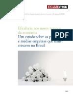 Relatorio PME Deloitte 2009