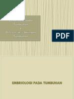 Embriologi Pada Tumbuhan Diferensiasi Tumbuhan