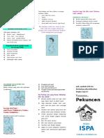 Leaflet Ispa - Warna
