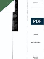 212749422-Mar-Paraguayo-Wilson-Bueno.pdf