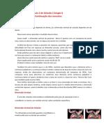 Aula 2 - Oclusão.pdf