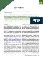 X LeDoux 2011 repensando el cerebro emocionalINGLES.pdf