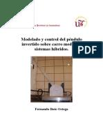 manual pendulo invertido.pdf
