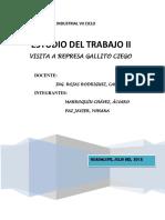 256656319-Gallito-Ciego-Terminado.docx