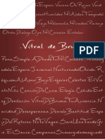 Libro de producción Vitral de bruma