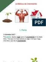 principiosdeliderasgoparaelcrecimientoorganisacional-170920140257