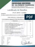IVAN  JOYO  CASTRO.pdf
