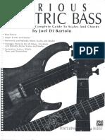 Serious Electric Bass -