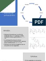 Ejemplos Selectos de Polisacáridos