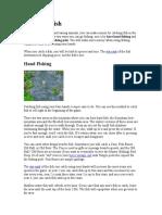 HMToTT - Activities - Fishing