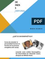 Webinar Pic 2d0 Encuentro Virtual