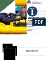 Contratos de Exportación de Gas Natural a Brasil