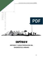 [CAPITULO v] Síntesis y Caracterización Del Diagnóstico Urbano
