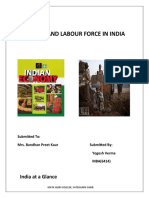 Economy & Labour Force in India (2)