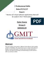 it professional skills personal report