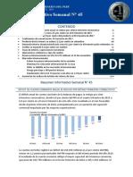 Resumen Informativo 45 2017