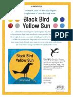 Black Bird Yellow Sun by Steve Light Press Release