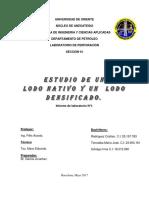 INFORME 1 LODOS NATIVOS Y DESIFICADOS2.docx