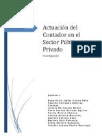 Actuación Del Contador en El Sector Público y Privado