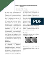 Aislamiento y caracterización de microorganismos árticos descomponedores de bioplásticos.docx