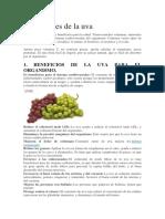 propiedades de las uvas.docx