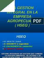 0,01a Hseq Gestion Integral