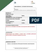 Modelo Relatório Atividade Profissional