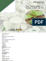 Produção de mudas teca.pdf