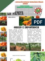 La Papaya Gema