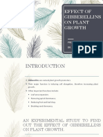 Effect of Gibberellins on Plant Growth