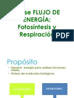 Clase Fotosc3adntesis y Respiracic3b3n