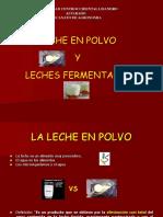 lecheenpolvoyyogurt-130722101150-phpapp01
