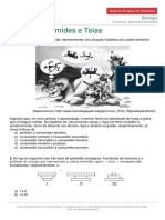 Materialdeapoioextensivo-biologia-cadeias-piramides-teias-246937a0fe4f823c37df9a06a39ed3f1d26c8dfa20f2daeb23f468b1817303d1.pdf